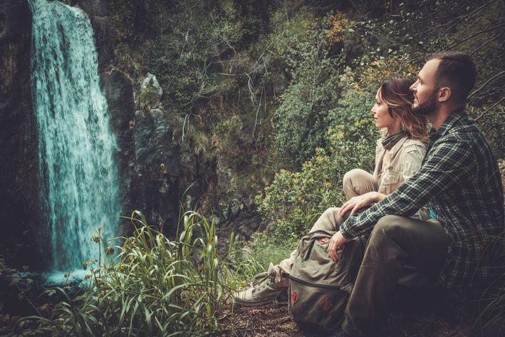 bewusst leben durch die Kraft des Waldes